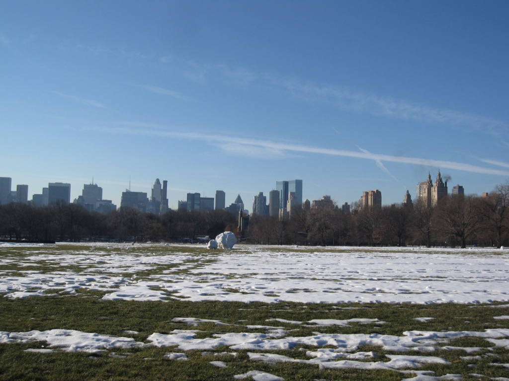 Central Park New York Skyline Manhattan snow